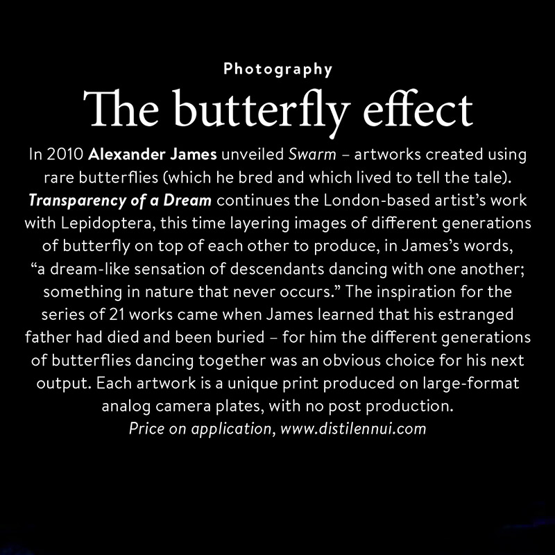 The butterfly effect - an article in Christies Magazine as I dance underwater with butterflies