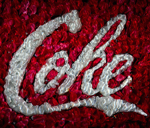 the impact Coca Cola Company has on the planet in carbon footprint and plastic pollution in global oceans.