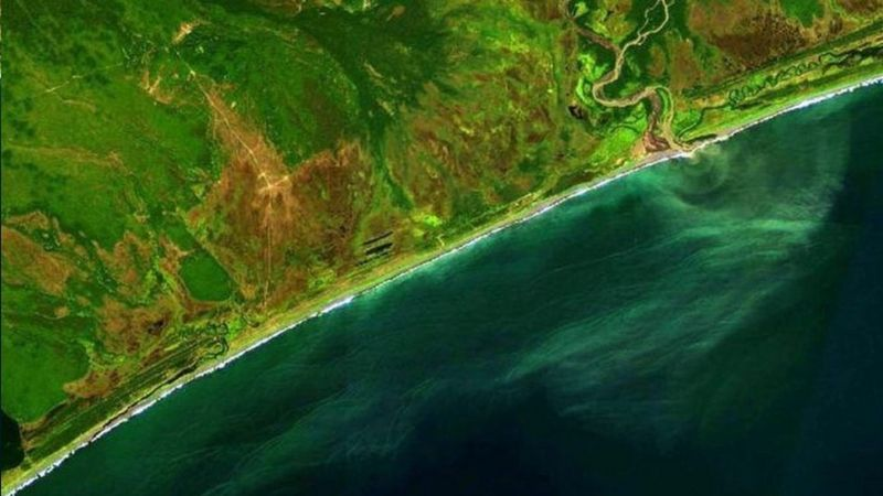 Russian rocket fuel leak most likely cause of underwater marine animal deaths in Kamchatka peninsula, Russia