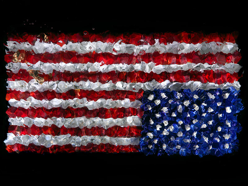 AS AMERICA DECIDES. I explore the American Stars and Stripes Flag by making it from flower petals.